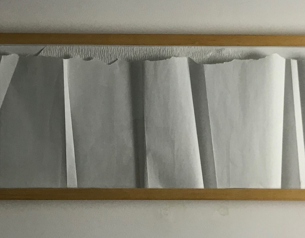 S/ TÍTULO / Papel de arroz e crepom </br>